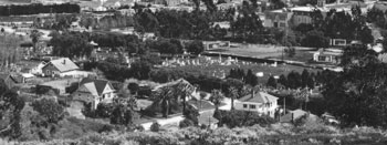 Arial of park in black and white